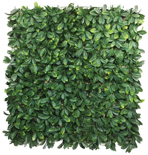 witchhedge hedge tile laurel