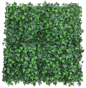 hedge tile ivy main 300px