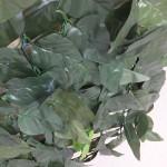witchfence leaf dark 700px