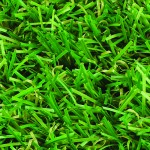 Witchgrass Classic artificial grass overhead view