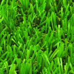 Witchgrass Imperial Artificial Grass Overhead View
