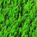 Witchgrass Luxury Artificial Grass Overhead view