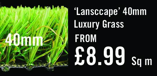 witchgrass-landscape-price-point