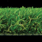 witchgrass-york-side-view