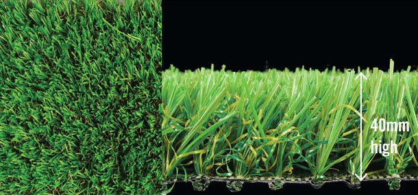 witchgrass-landscape-combo-610px