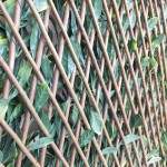 Extendable Hedge - Reverse side - trellis