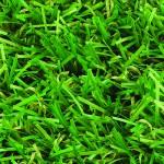 Witchgrass Classic artificial grass overhead view